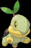 68.草苗龜(♀)
